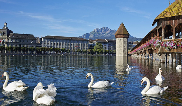Made in Lucerne, Switzerland